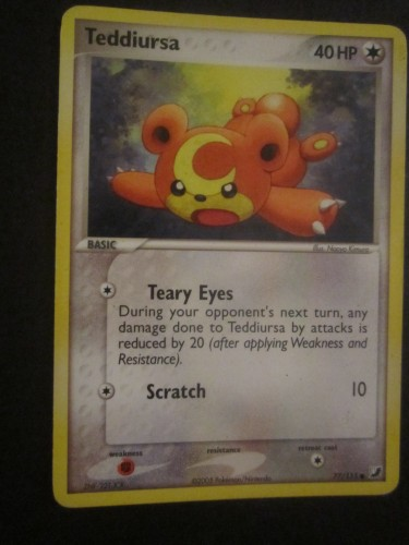 Carta Pokemon Teddiursa in Inglese.JPG