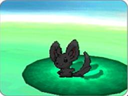Prima della battaglia, viene dato uno sgardo da vicino al Pokémon!.png