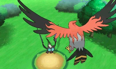 Talonflame Pokemon X and Y.jpg