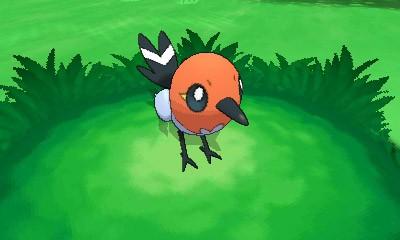 Fletchling Pokemon X e Y 2.jpg