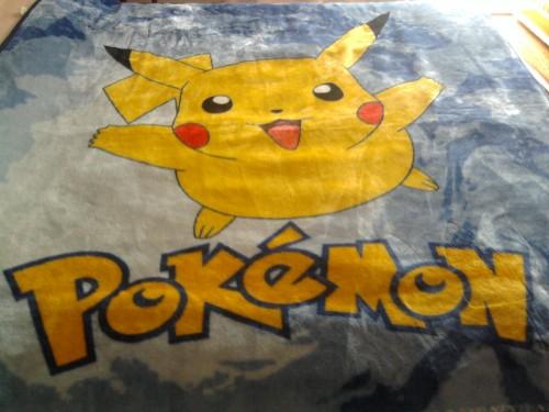Coperta Pokemon.jpg