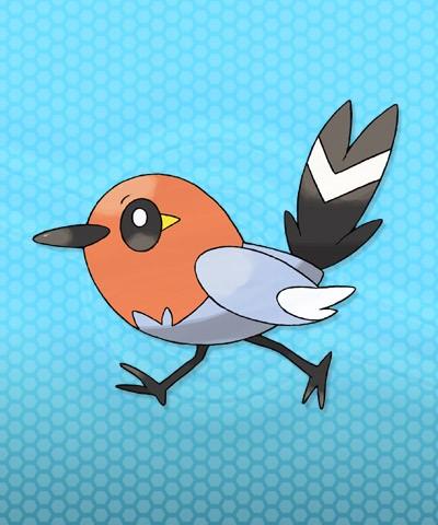 Fletchling Pokemon X e Y.jpg