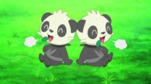 XY011 - Inseguimento nella Foresta Bamboo! Pancham e Pangoro!! di Pokemon X e Y 2